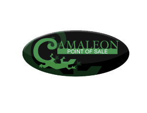 Merchant Warehouse Partners With Camaleon Systems