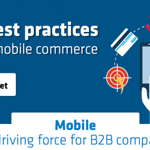 Five Best Practices For B2B Mobile Commerce [Infographic]