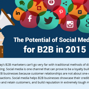 How B2B Businesses Are Tackling Social Media In 2015 [Infographic]