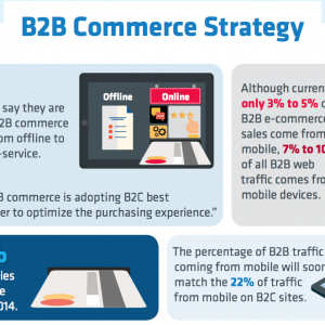 5 Best Practices For B2B Mobile Commerce [Infographic]
